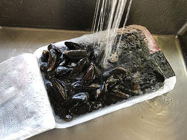 mosselen wassen