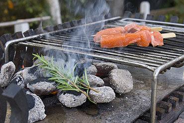 Zalmspies van de grill